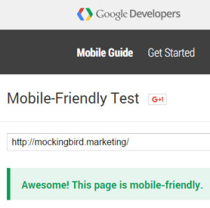 Mobile Friendly Test Result