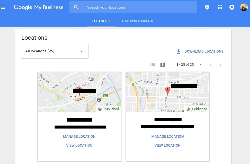 Accessing the Hidden Fields in Google My Business
